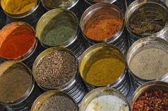 Condimentos do alimento Foto de Stock