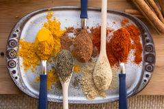 Food ingredients. Colorful food ingredients in spoon. From left to right: turmeric, black pepper, cinnamon, ginger, cayenne royalty free stock images