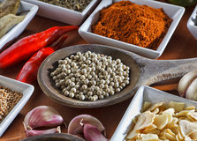 Condiments. Colorful herbs and spices selection. Aromatic ingredients on wood table Stock Image