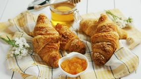 Condiments and croissants lying on towel. Bunch of tasty fresh croissants lying near sweet yummy jam and honey on checkered towel stock video footage