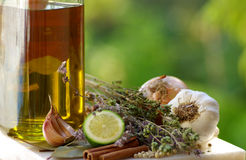 Condiments of Cuisine. Condiments of the Portuguese traditional Cuisine stock photo