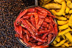 India Condiments ,Spices, food. Condiments and species in a popular market in India Royalty Free Stock Photography