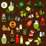 Condiments, Spices, Herbs And Oil Flat Icons Stock Images