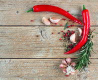 Condiments and spices - rosemary, garlic, pink and black pepper, chilli Stock Photography