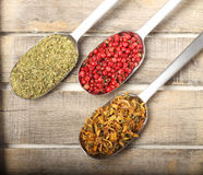 Condiments on wooden background. Condiments in three spoons on wooden backgroud Royalty Free Stock Image