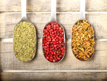 Condiments on wooden background. Condiments in three spoons on wooden backgroud Stock Photography