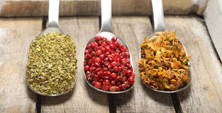 Condiments na drewnianym tle zdjęcie royalty free