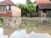 Condition of house with a yard after floods Stock Photos