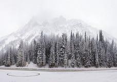 Conditions d'hiver rude chez Rogers Pass National Historic Sit photo libre de droits