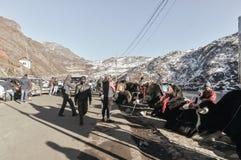 Condizione dei yak vicino al lago Tsomgo Changu È un lago glaciale naturale sacro sulla cima fotografie stock libere da diritti