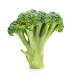 Condizione del broccolo, isolata su bianco Immagini Stock Libere da Diritti