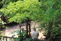 Condizione del guardia forestale di parco nello zoo a Leipzig in Germania fotografie stock