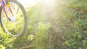 Condizione della bici su un'erba nel parco immagine stock libera da diritti