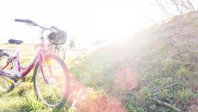 Condizione della bici su un'erba nel parco Molta luce solare ed esporre al sole i raggi sull'erba in parco immagine stock libera da diritti