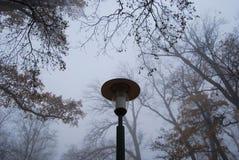 Condizione della lampada in un parco nebbioso fotografie stock