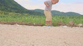 Condizione e funzionamento del bambino del bambino piccolo fra il campo di erba verde del giorno soleggiato del mais o del mais a stock footage