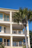 Condo Balconies and Palm Tree Royalty Free Stock Images