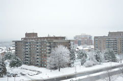 Condo buildings in snow in Montreal downtown Stock Photography