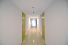 Condo Corridor with wooden doors in condominium, modern design Royalty Free Stock Photos