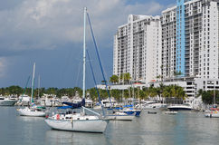 Condo and Live Aboard Sailboats Royalty Free Stock Photos
