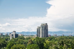 Condo Towers Rising From Trees in Denver Royalty Free Stock Image