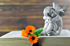 Condolence card with angel guardian and flowers. Condolence card with angel guardian and calendula flowers Royalty Free Stock Photo