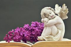 Condolence card with angel and spring flower. Condolence card with angel and lilac flower royalty free stock images