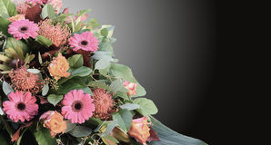 Condolence card with flowers arrangement and dark background. Colorful flower arrangement with orange roses, gerbera daisy's, nutan flowers, green leaves, oak Royalty Free Stock Photos