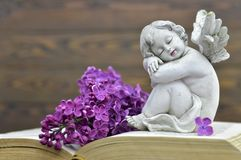 Condolence card with guardian angel and spring flower. Condolence card with guardian angel figurine and spring flower royalty free stock photo