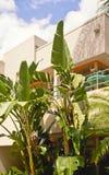 Condomínio tropical Imagens de Stock Royalty Free