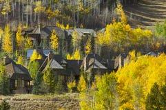 Condomini dell'Aspen - ottenendo pronto per l'inverno Fotografia Stock Libera da Diritti