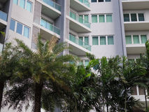 Condominio con el jardín, árboles urbanos Imagen de archivo