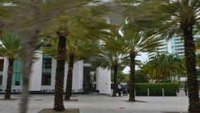 Condominio Miami Beach del apogeo metrajes