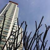 condominium fotografie stock libere da diritti