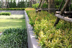 Condominium landscape garden design Stock Photos