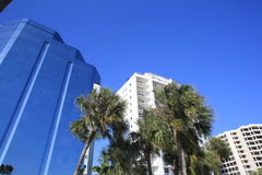 Condominium Towers, Sarasota, Florida, USA. On the left is blue colored skyscraper, on the right are two condominium towers and below is a group of palm trees Stock Image