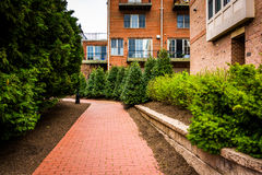 Condominiums and bushes along a brick pathway in Fells Point, Ba Stock Photography
