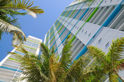 Condominiums and palm trees Stock Photography