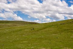 Condon Hills. Gently rolling grass covered hills, south of Condon Oregon Stock Images
