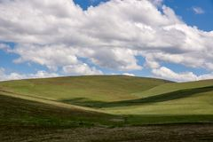 Condon Hills. Gently rolling grass covered hills, south of Condon Oregon Royalty Free Stock Images