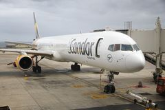 Condor airline Stock Images