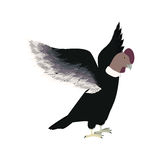 Condor animal bird icon with opened wings. Illustration Stock Photos