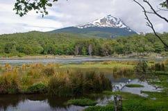 Condor de Cerro et Lago Roca en Tierra Del Fuego National Park, nous Images stock
