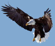 Condor. Vector Low Poly Styled Illustration of the American Eagle Royalty Free Stock Photo