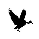 Condor vector silhouette. Vector illustration as silhouette of andean or californian condor or vulture flying Royalty Free Stock Photos