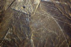 condoren lines nazcaen peru Royaltyfri Foto