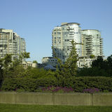 Condos and park Stock Photography