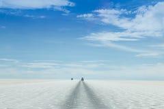 Condução de carro nos planos de sal Imagem de Stock