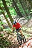 Condução sênior na floresta com bicicleta de montanha Fotos de Stock Royalty Free
