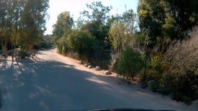 Conducción abajo del camino en Córcega almacen de metraje de vídeo